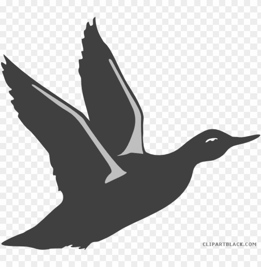 free PNG bird taking off PNG image with transparent background PNG images transparent