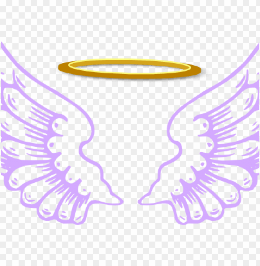 free PNG bird wings PNG image with transparent background PNG images transparent