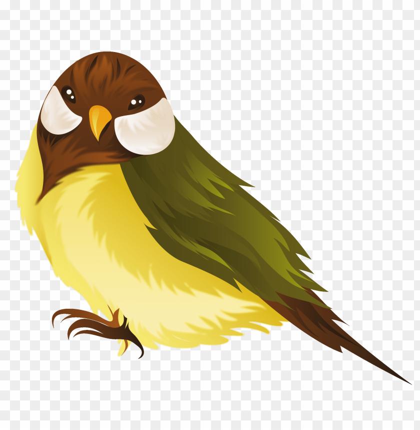 free PNG Download birds free vector design png images background PNG images transparent