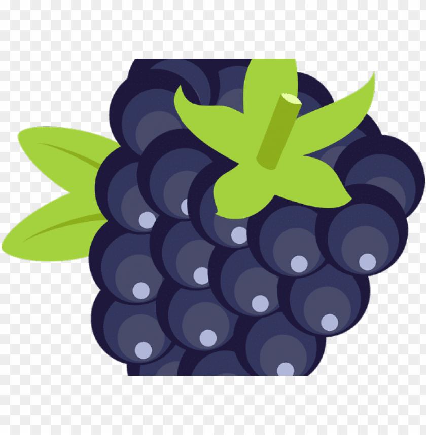 free PNG blackberry fruit png transparent images - blackberry fruit icon PNG image with transparent background PNG images transparent