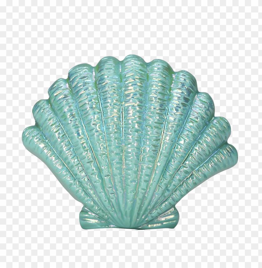 free PNG Download blue seashell png images background PNG images transparent