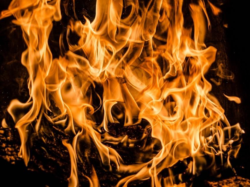 free PNG bonfire, fire, firewood, flame, combustion background PNG images transparent