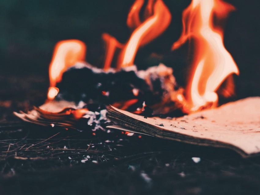 free PNG bonfire, fire, paper, ashes, burn background PNG images transparent