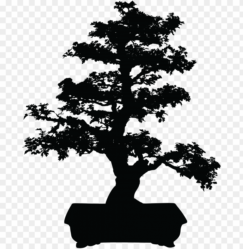 Bonsai Tree Clipart Japanese Bonsai Tree Clip Art Vector Bonsai Tree Black And White Png Image With Transparent Background Toppng
