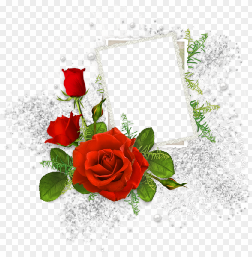 free PNG borders and frames, frame clipart, cute frames, picture - funeral photo frames PNG image with transparent background PNG images transparent