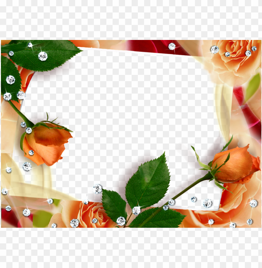 free PNG borders and frames, invitation cards, lisa, beautiful - borders and frames by dover PNG image with transparent background PNG images transparent