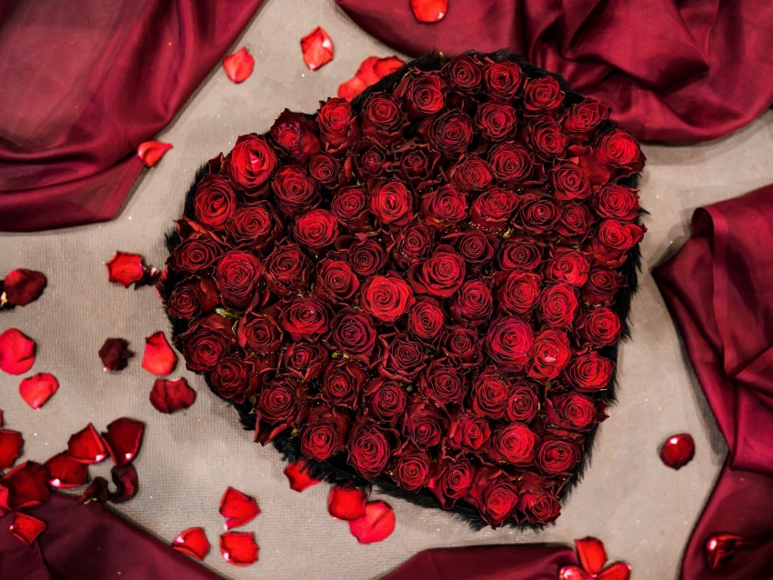 free PNG bouquet, roses, composition, heart background PNG images transparent