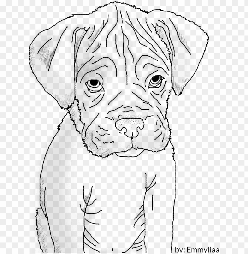 Boxer Puppy Lineart By Emmyliaa On Deviantart Boxer Dog Drawing Easy Png Image With Transparent Background Toppng