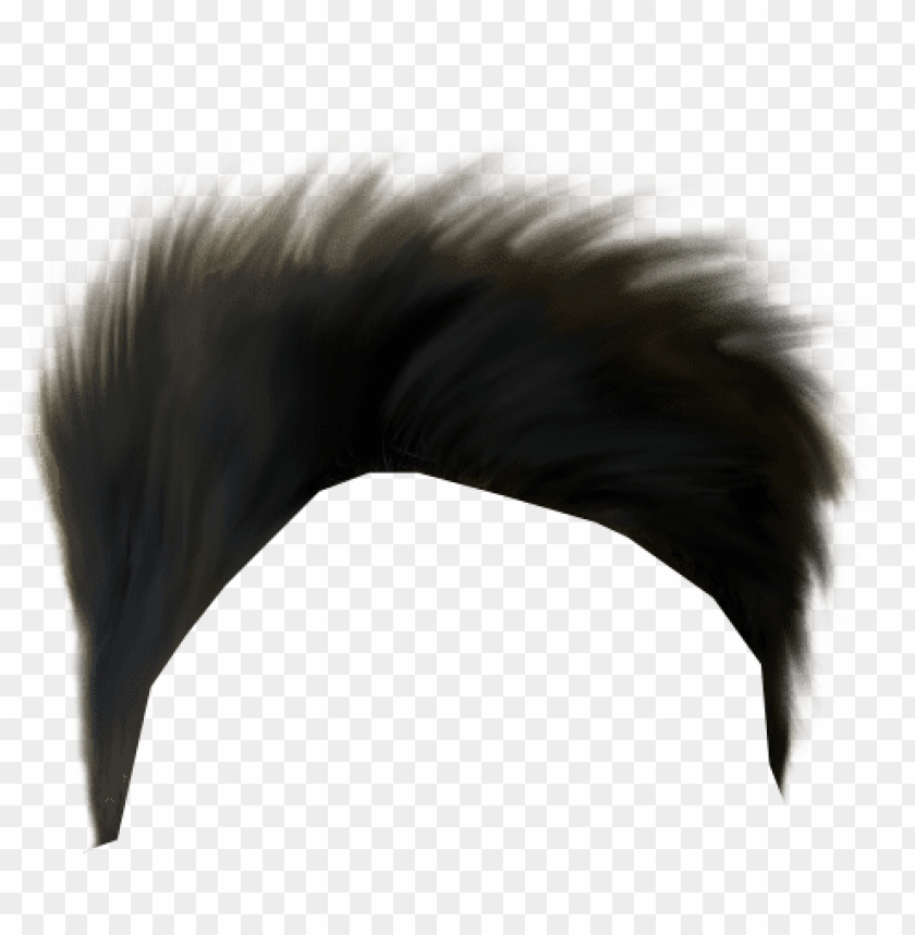 Boy Hair Png Banner Royalty Free Download Hair Png Hd Download Png Image With Transparent Background Toppng