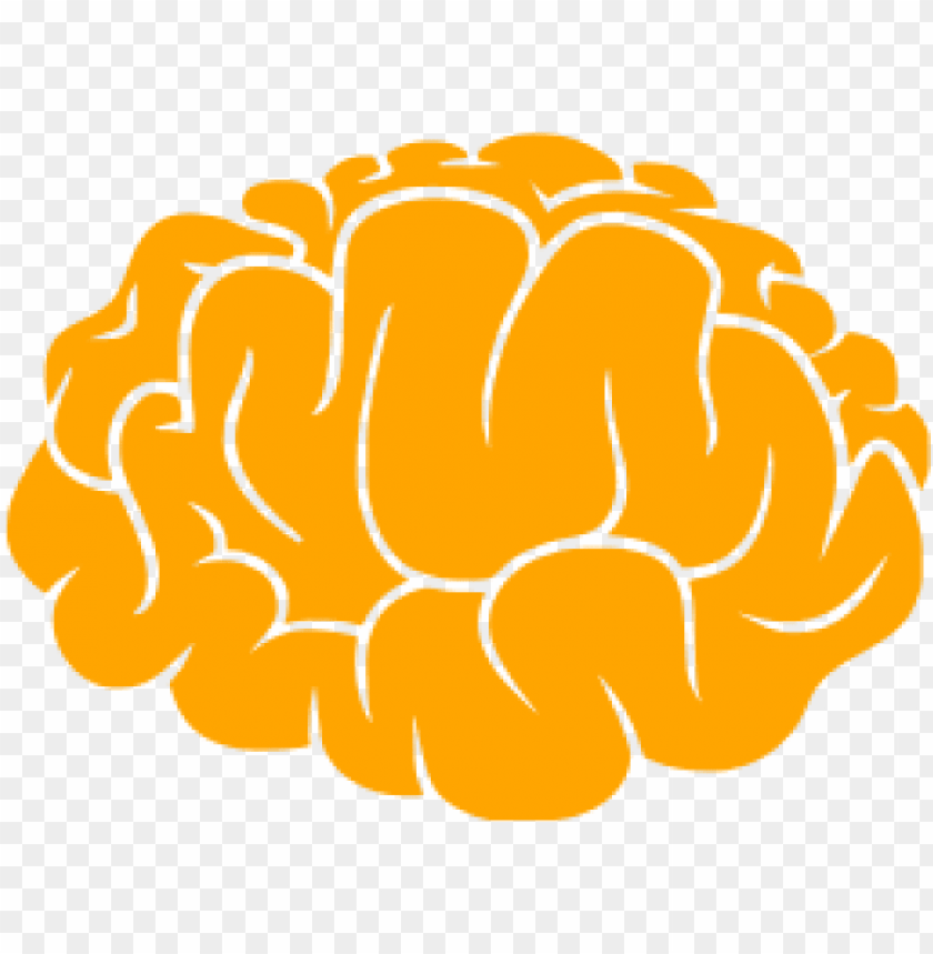 free PNG brainicon - transparent brain icon png - Free PNG Images PNG images transparent