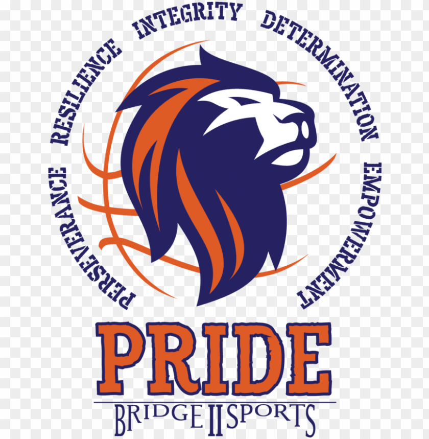 free PNG bridge ii sports - poster PNG image with transparent background PNG images transparent