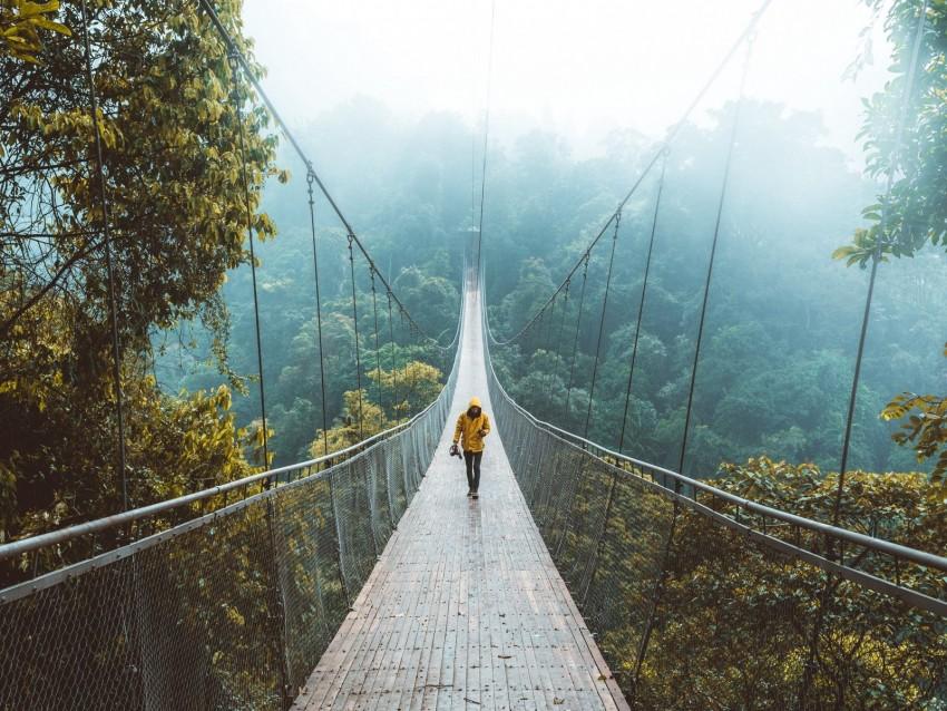free PNG bridge, suspension bridge, loneliness, walk, forest background PNG images transparent