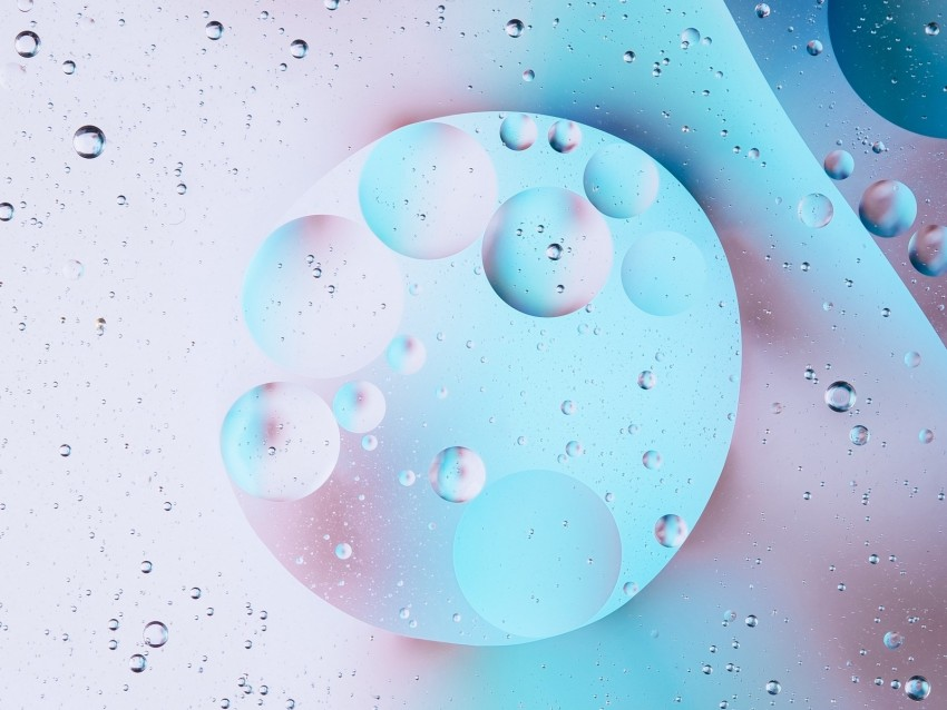 free PNG bubbles, circles, macro, bright background PNG images transparent