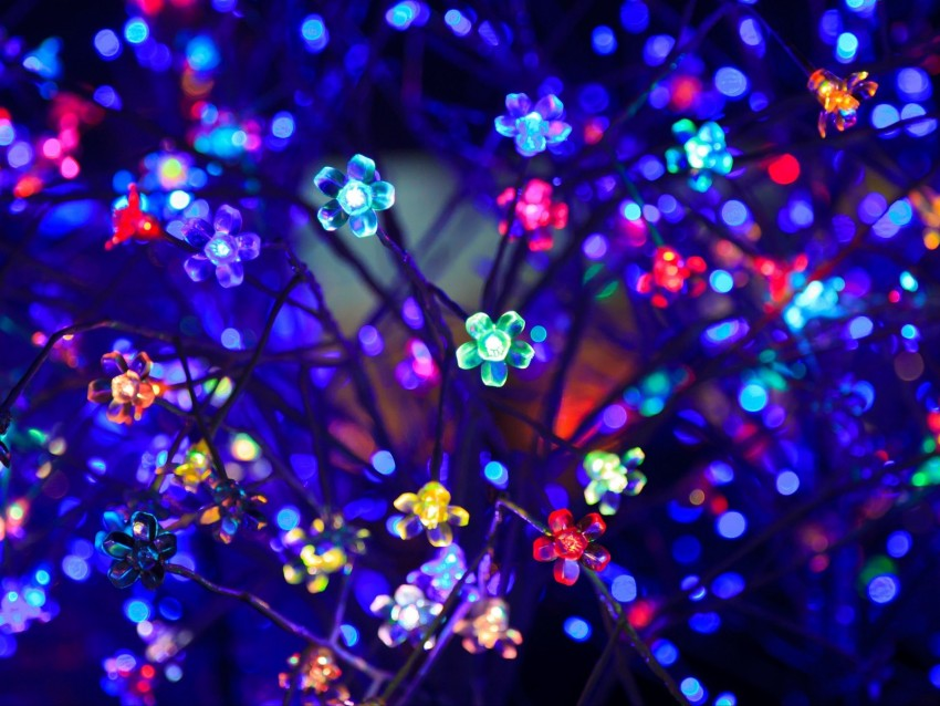 free PNG bulbs, flowers, neon, light, lighting, glare, bokeh, colorful background PNG images transparent