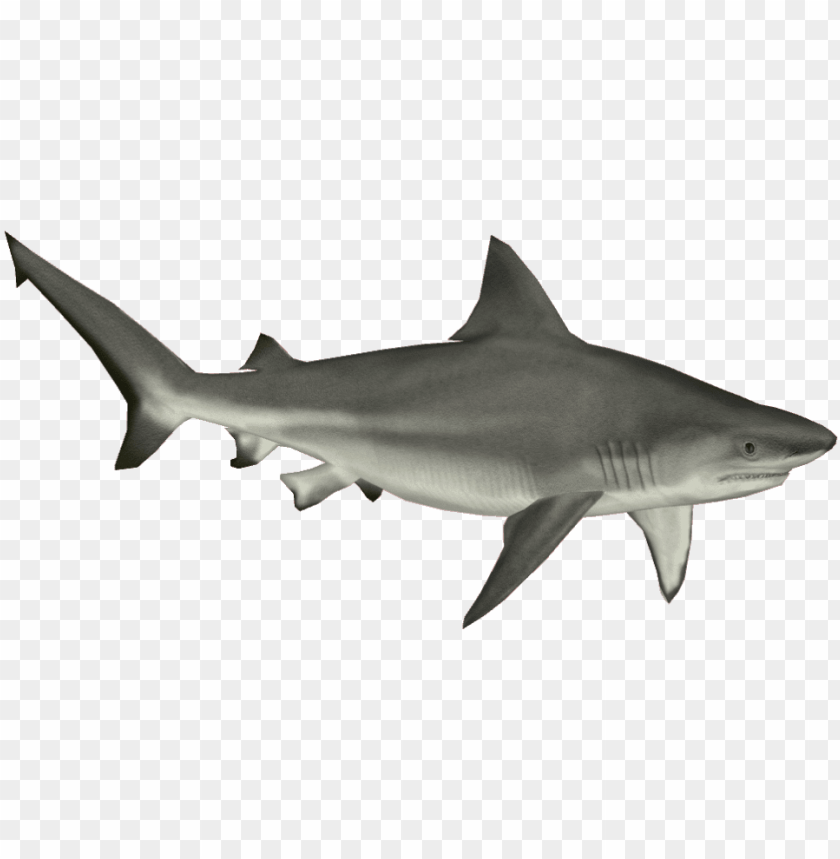 Bull Shark Png Shark Png Image With Transparent Background Toppng Use these free shark png #2822 for your personal projects or designs. bull shark png shark png image with