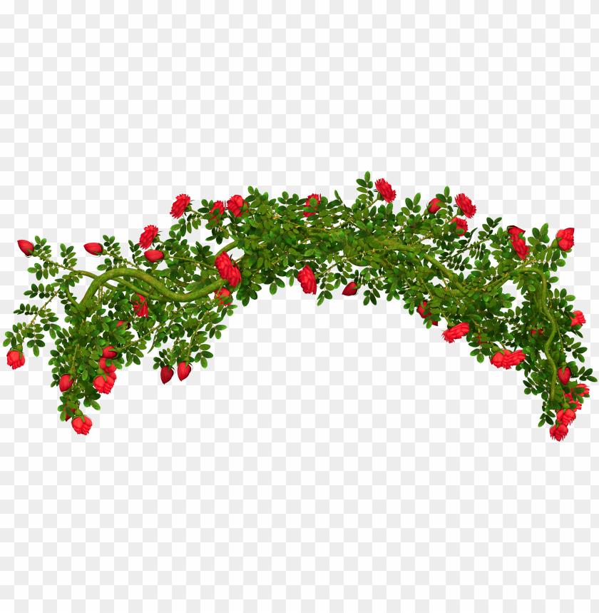 free PNG bush drawing background - rose bush transparent background PNG image with transparent background PNG images transparent
