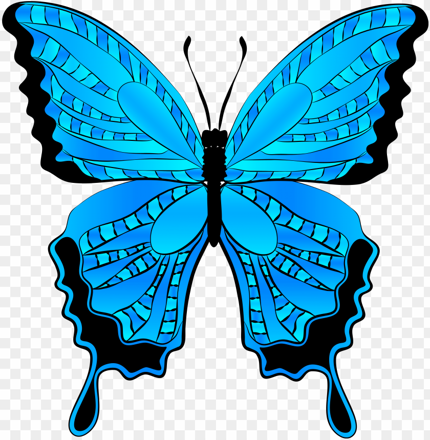 free PNG butterfly clip art bedroom designs dragonflies and - blue butterfly clipart PNG image with transparent background PNG images transparent
