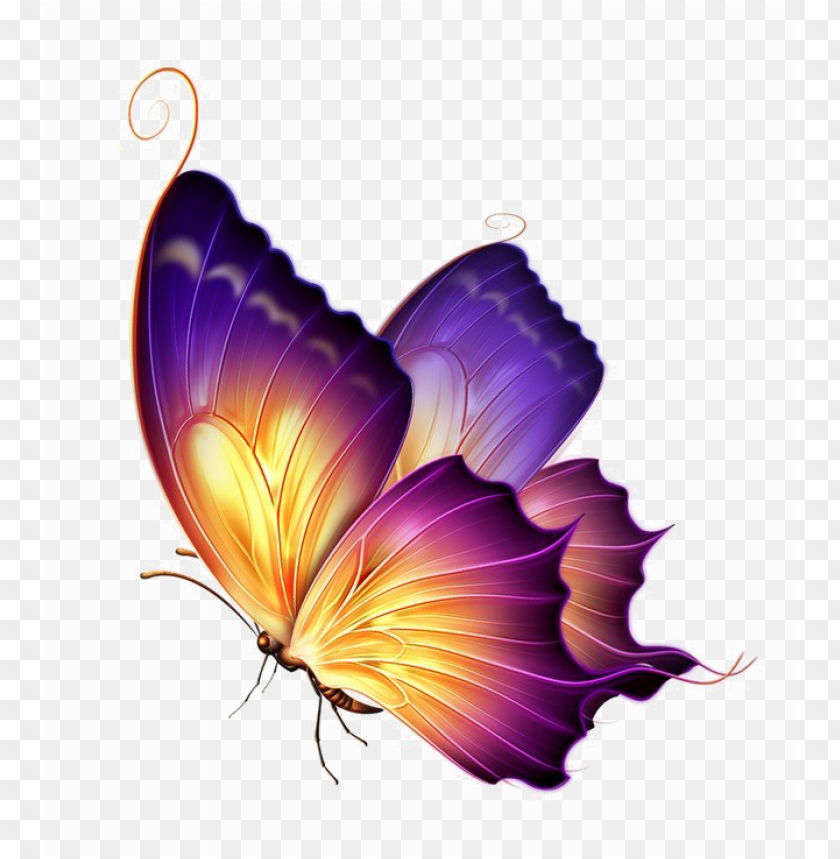 free PNG butterfly png transparent image - purple yellow butterfly PNG image with transparent background PNG images transparent
