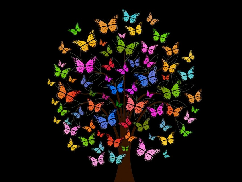 free PNG butterfly, tree, patterns, colorful background PNG images transparent