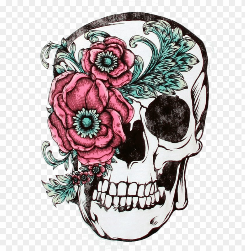 Skull | Free Images at Clker.com - vector clip art online, royalty free &  public domain