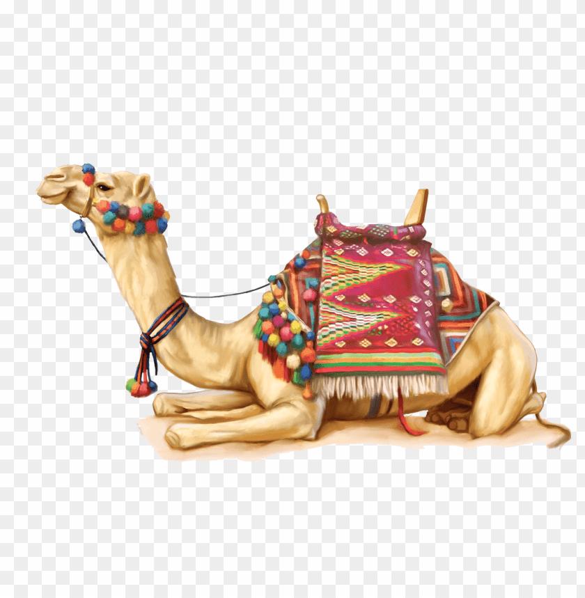 free PNG Download camel png images background PNG images transparent