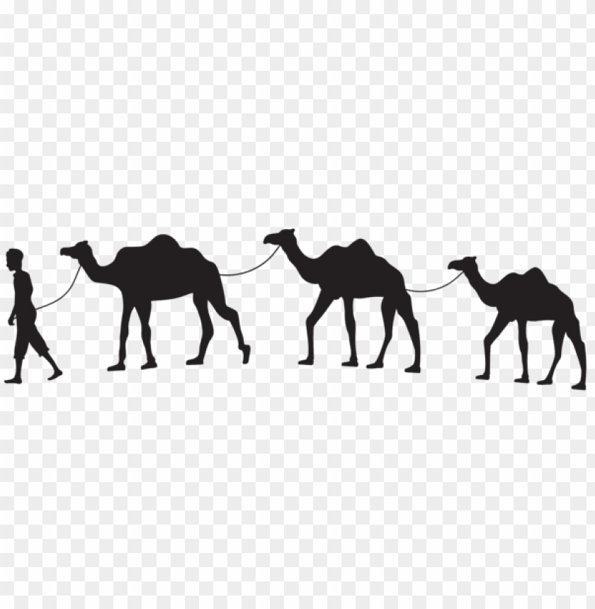 free PNG camel caravan silhouette png png - Free PNG Images PNG images transparent