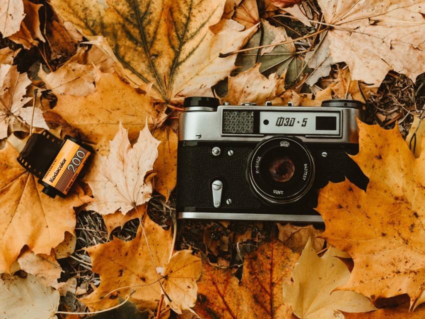 free PNG camera, autumn, foliage, retro, vintage, photographic film background PNG images transparent