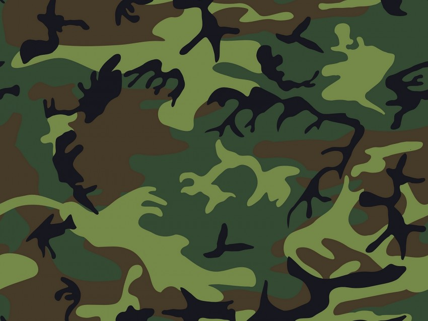 free PNG camouflage, military, patterns, texture, green background PNG images transparent
