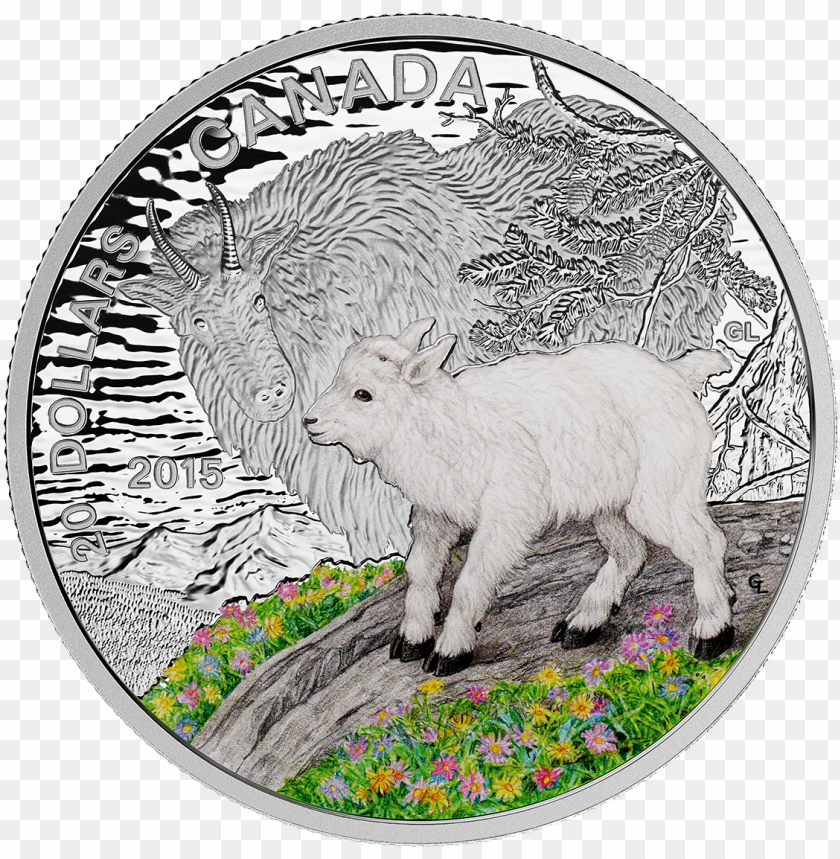 free PNG canada 2015 baby animals - 2015 fine silver 20 dollar coin - baby animals: mountai PNG image with transparent background PNG images transparent