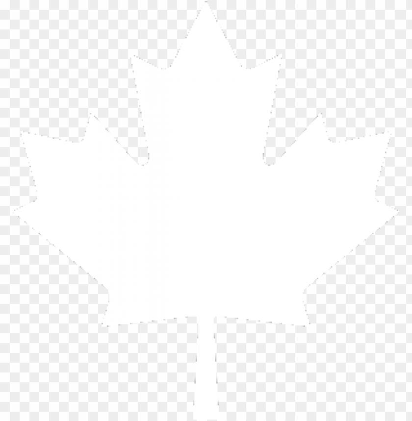 free PNG Download canada leaf free download png png images background PNG images transparent