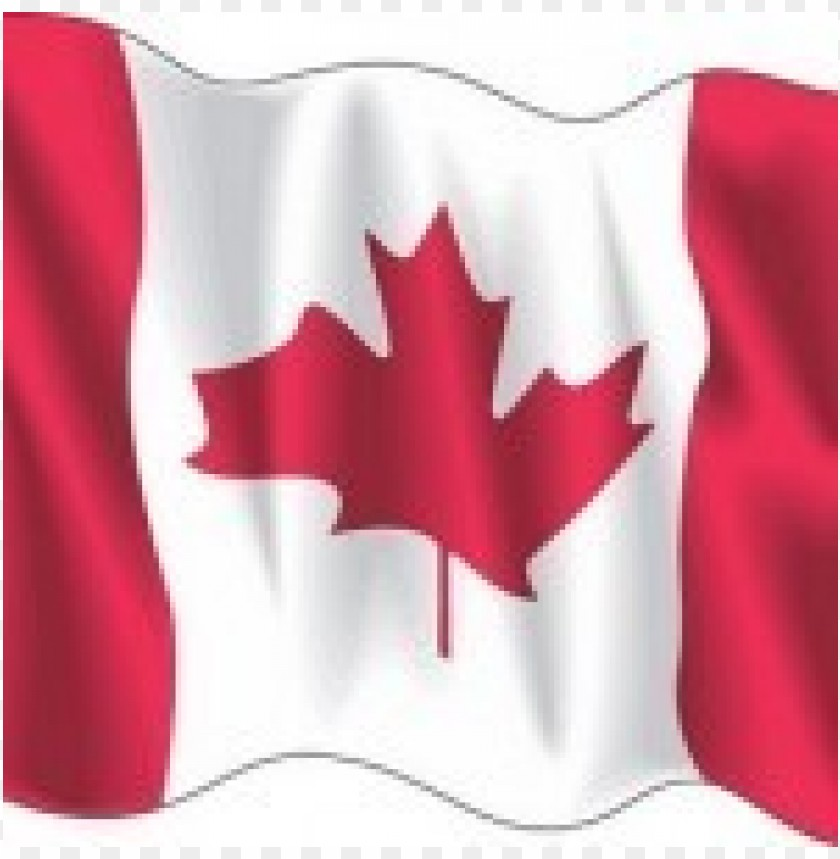 canada wave flag vector download free@toppng.com