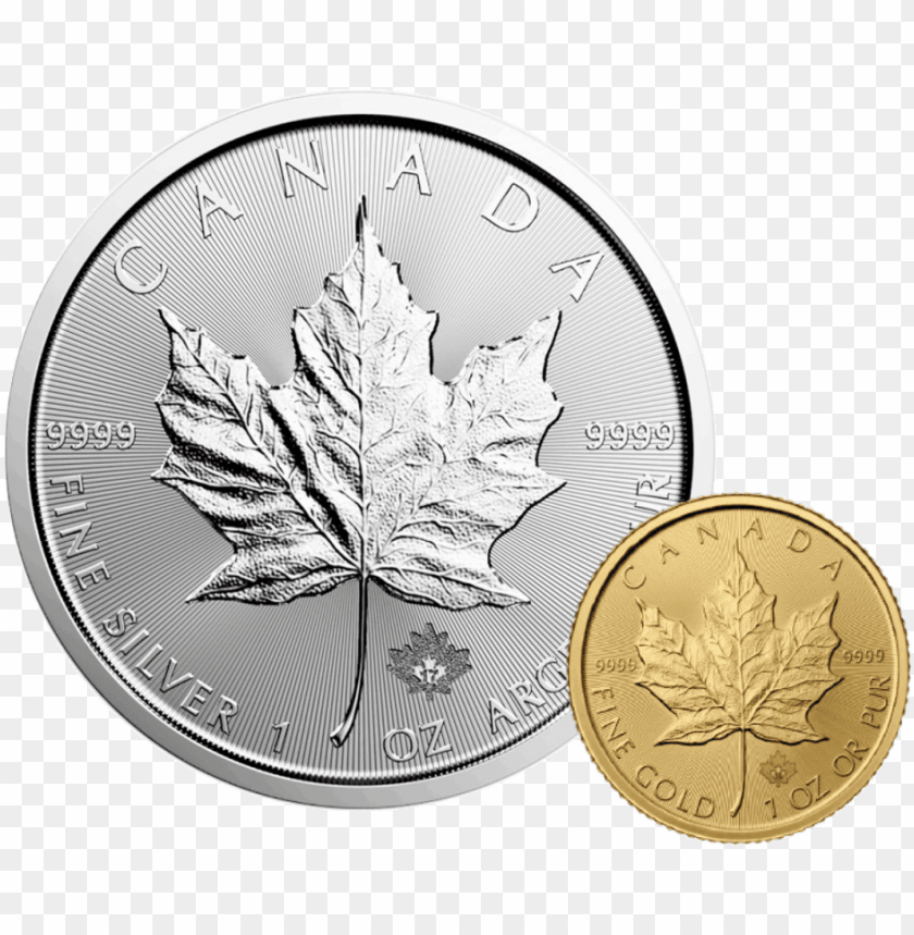 free PNG canadian maple leaf - 2017 silver maple leaf PNG image with transparent background PNG images transparent