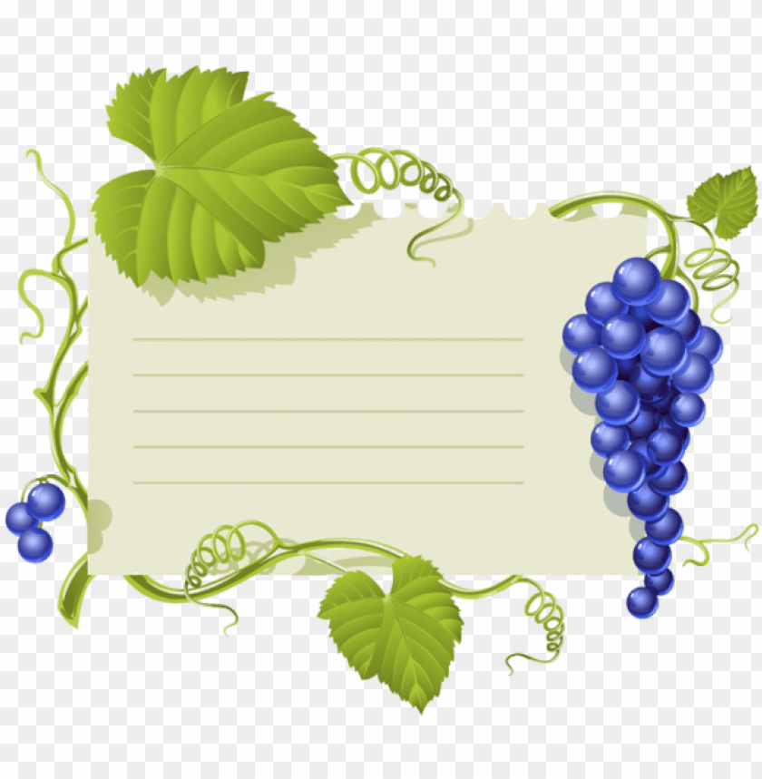 free PNG canning labels, borders and frames, bulletin boards - grapes leaves vector PNG image with transparent background PNG images transparent