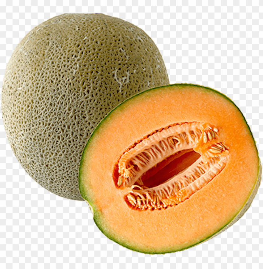 Cantaloupe Png Png Image With Transparent Background Toppng Cantaloupe is the equivalent to el melón cantalupo in castilian spanish, and i'm pretty sure you've heard it many times before. cantaloupe png png image with