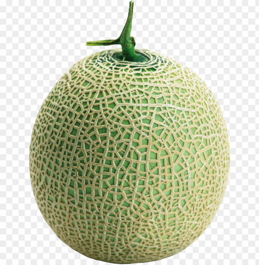 Cantaloupe Png Png Image With Transparent Background Toppng All images is transparent background and free download. cantaloupe png png image with