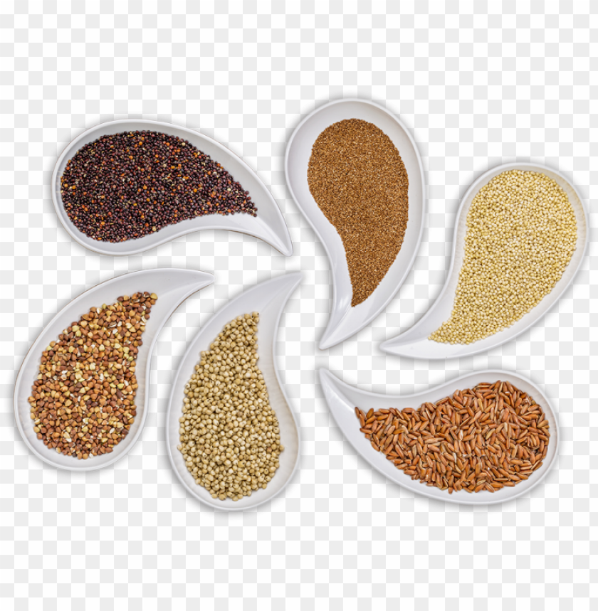 free PNG carefully selected and controlled ingredients - glute PNG image with transparent background PNG images transparent