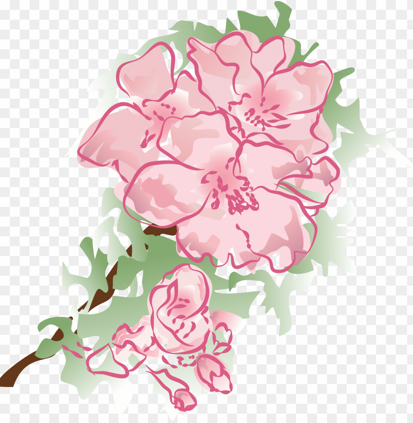 free PNG carnationmothers day - pink peonies PNG image with transparent background PNG images transparent