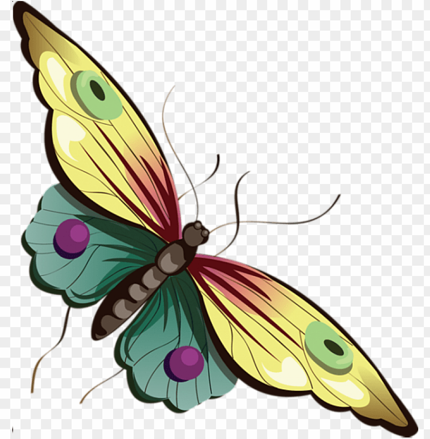 free PNG Download cartoon yellow and blue butterfly clipart png photo   PNG images transparent