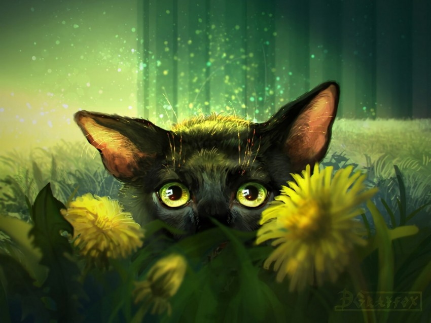 cat, flowers, art, eyes, glance background@toppng.com