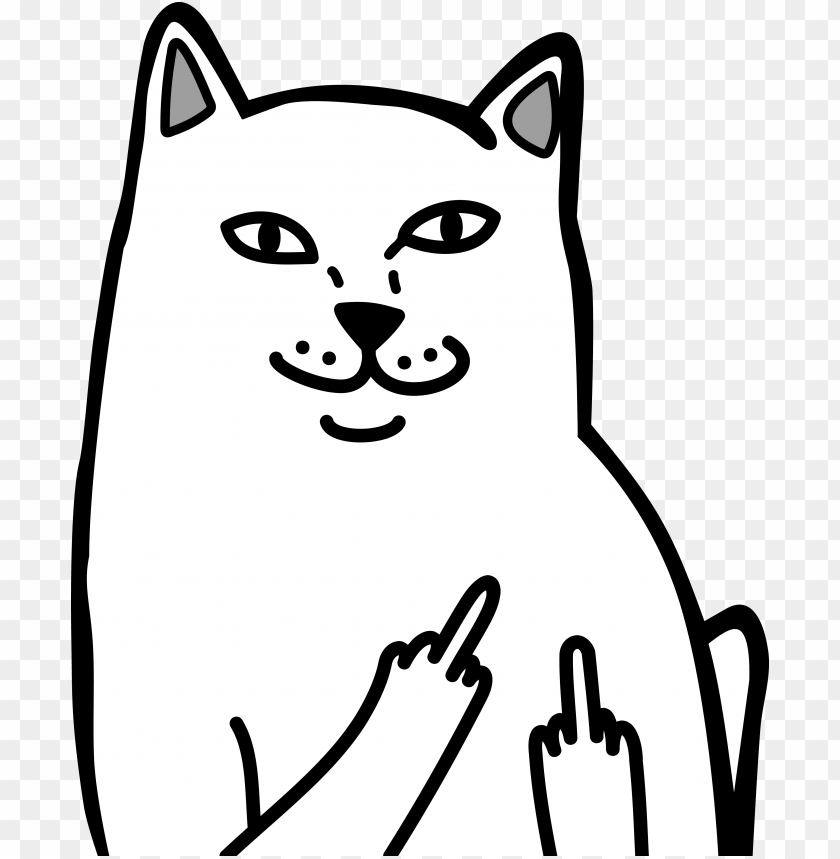 free PNG cat middle finger the - stickers middle finger PNG image with transparent background PNG images transparent