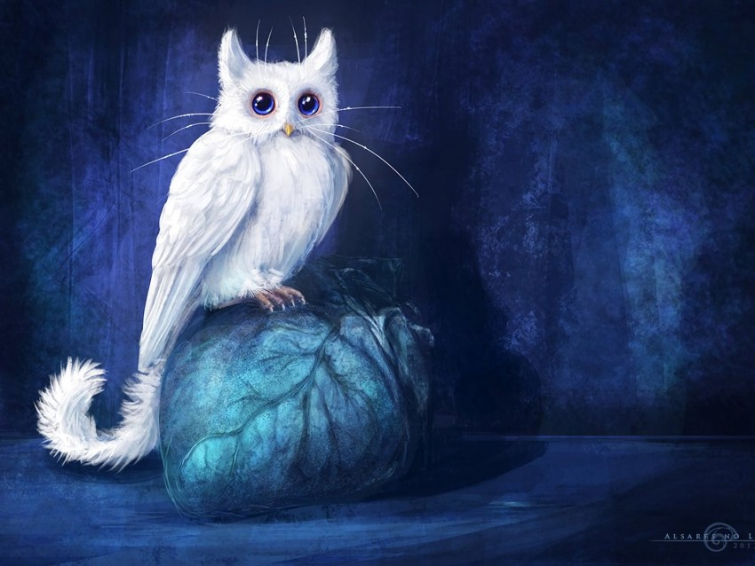 cat, owl, art, fantasy background@toppng.com