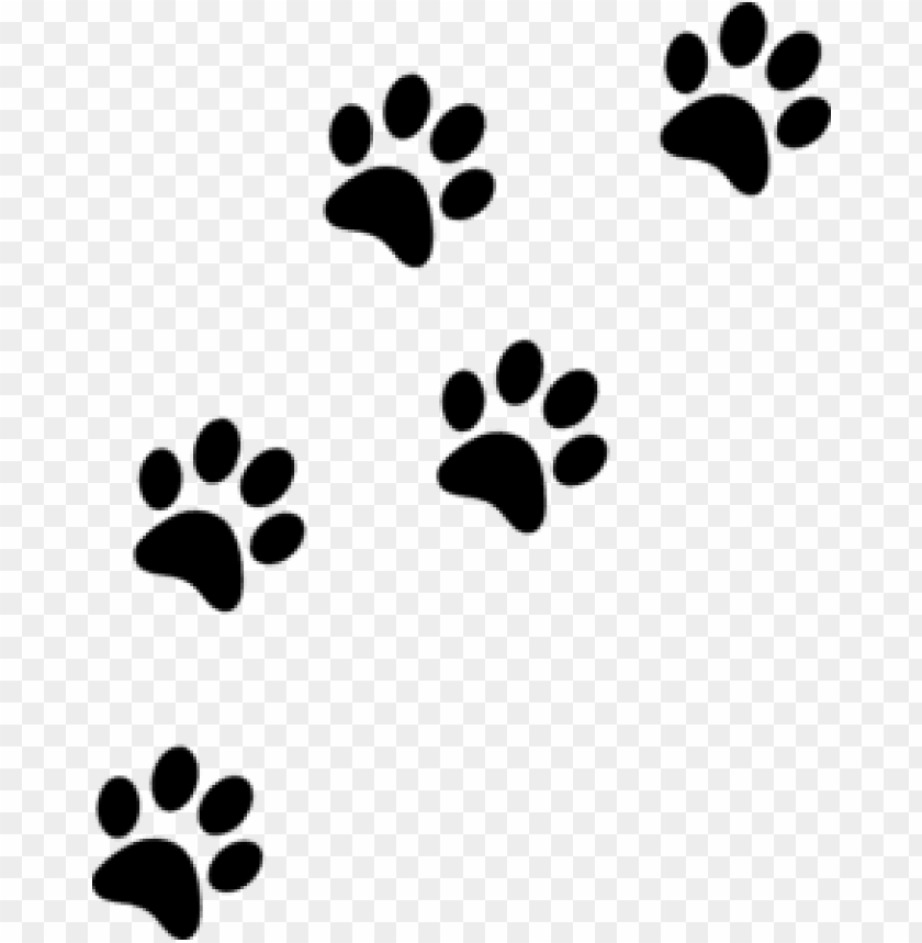 Download Cat Paw Prints Png Images Background Toppng Free icons of paw print in various ui design styles for web, mobile, and graphic design projects. download cat paw prints png images