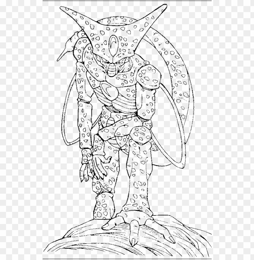 free PNG cell dragon ball para colorear PNG image with transparent background PNG images transparent
