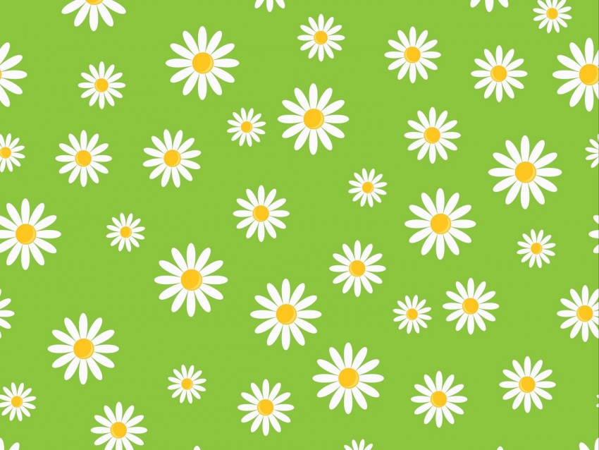 free PNG chamomile, patterns, texture, art, green background PNG images transparent