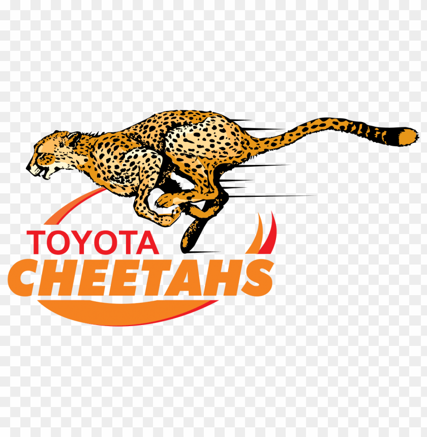 free PNG cheetahs rugby logo png images background PNG images transparent