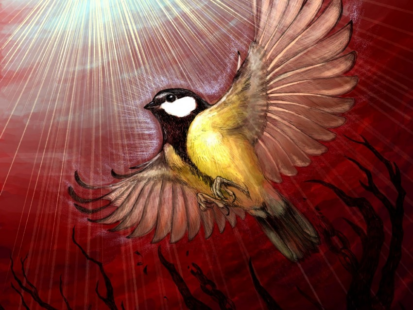 free PNG chickadee, bird, rays, shine, tree, art background PNG images transparent