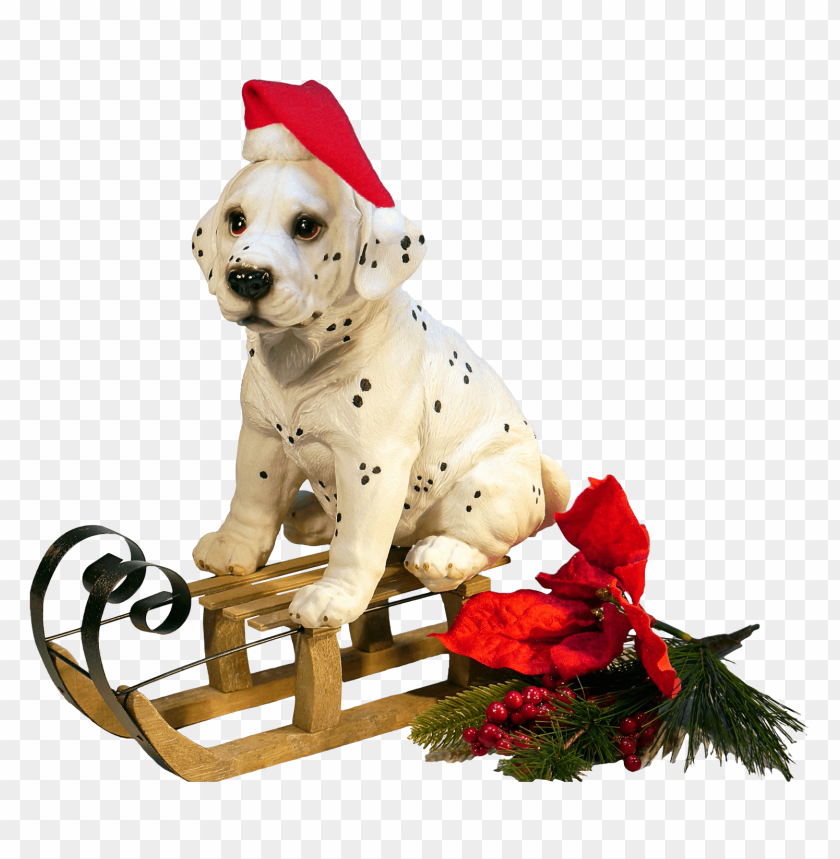 Download Christmas Dog png images background@toppng.com