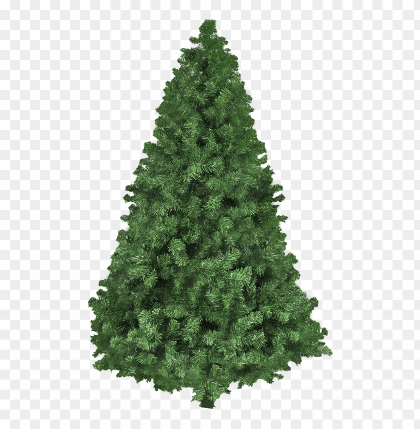 free PNG Download christmas tree png images background PNG images transparent