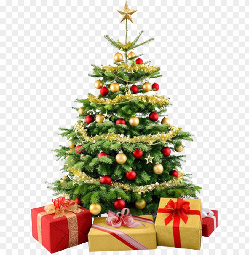 free PNG christmas tree png - christmas tree no background PNG image with transparent background PNG images transparent