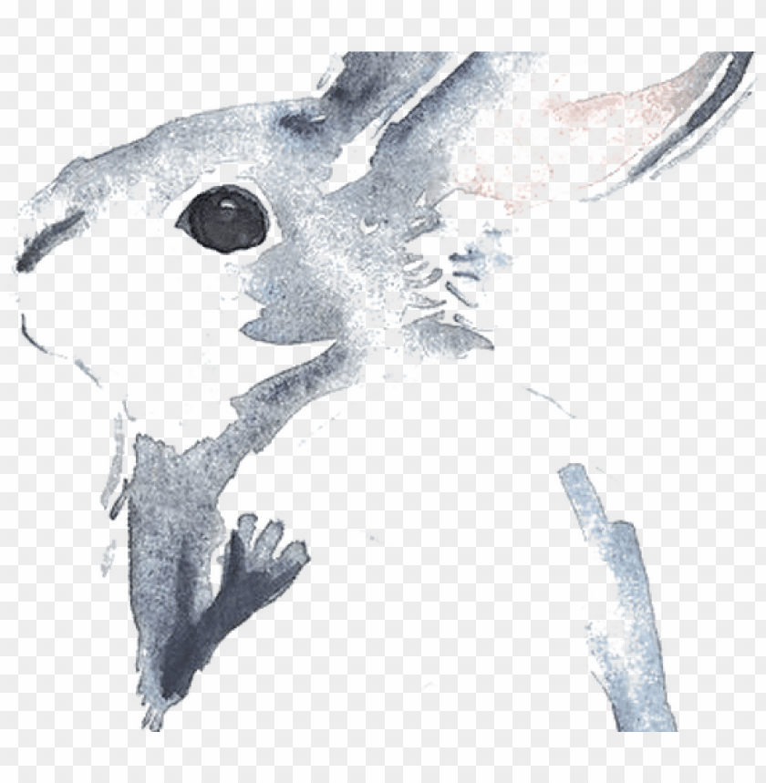 free PNG cinnamon rabbit watercolour flowers drawing watercolor - rabbit watercolor painti PNG image with transparent background PNG images transparent